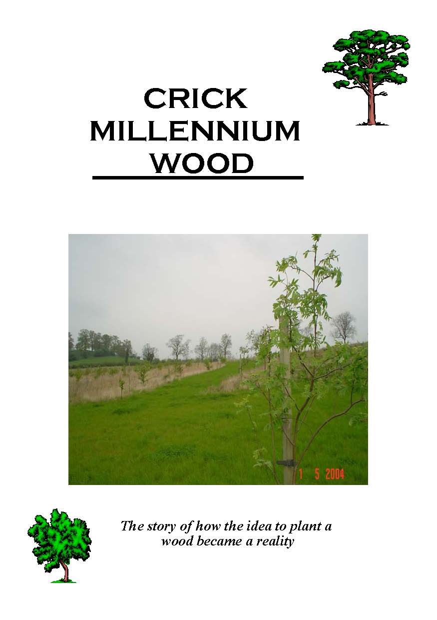 Millenium Wood story frontpage